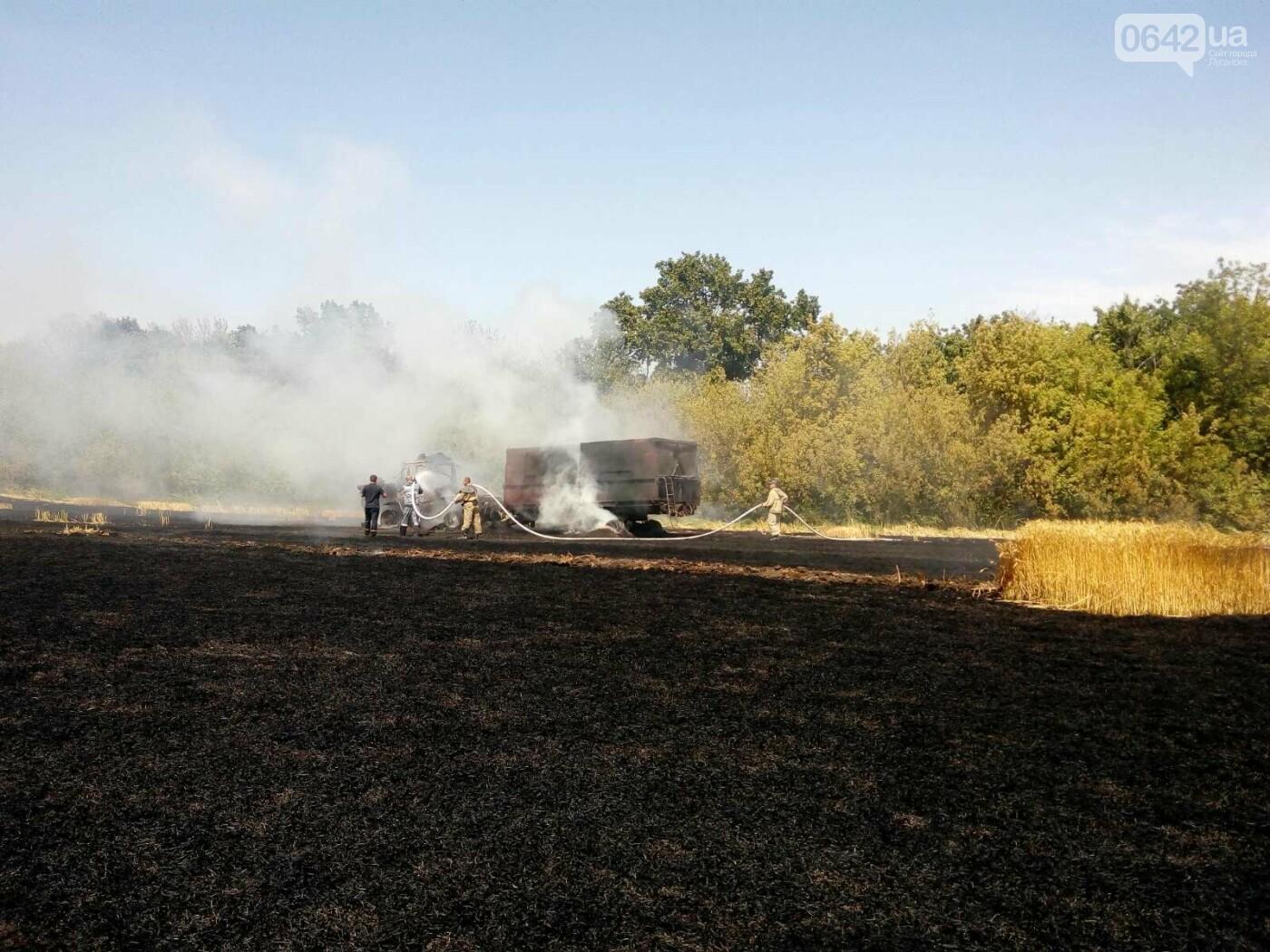 На Луганщине горело поле пшеницы, - ФОТО, фото-2