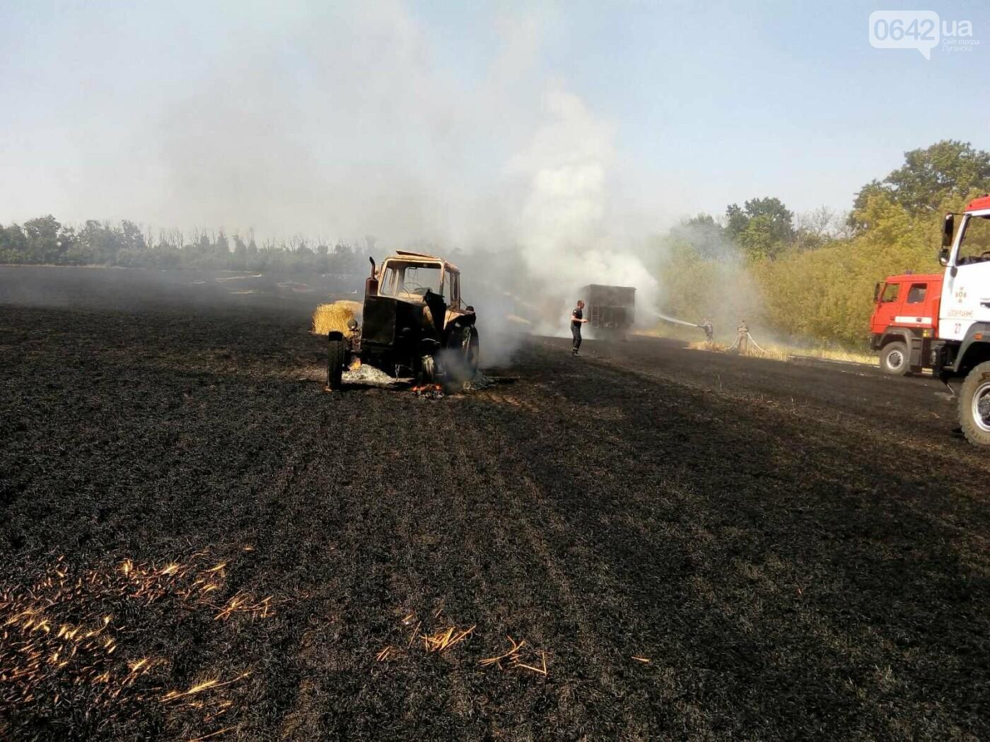 На Луганщине горело поле пшеницы, - ФОТО, фото-1