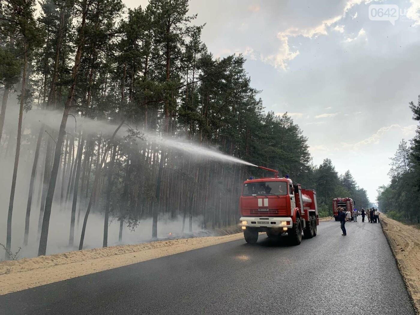 Под Северодонецком горит лес: Перекрыты дороги, идет эвакуация жителей села, - ФОТО, фото-3