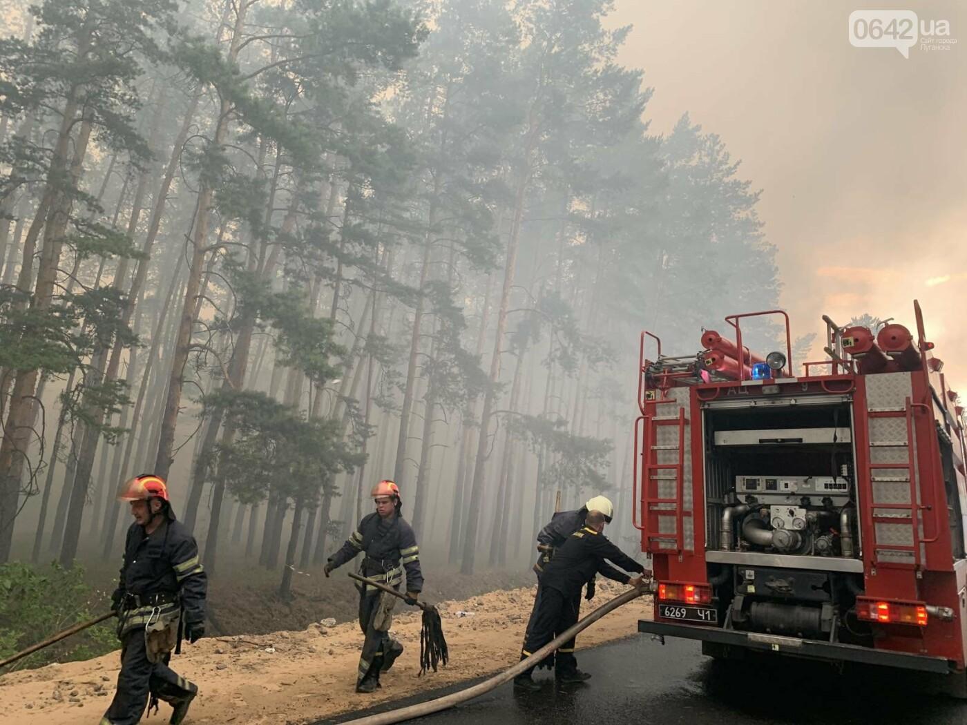 Под Северодонецком горит лес: Перекрыты дороги, идет эвакуация жителей села, - ФОТО, фото-2