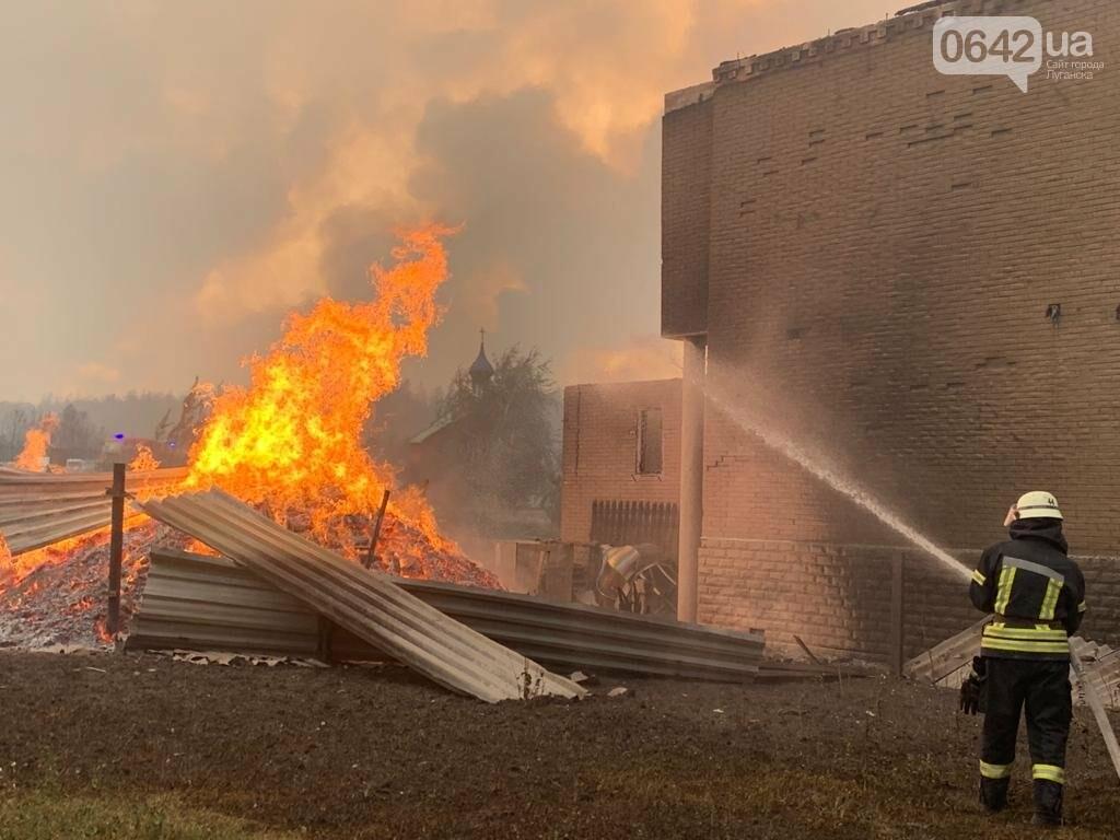 Страшный лесной пожар в Луганской области: погибли шесть человек, сгорели свыше ста домов, - ФОТО, ВИДЕО, фото-1