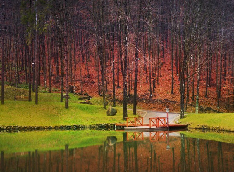 Невероятная Украина. Замки, вкусная еда и винные погреба Закарпатья (КАРТА, ФОТО, ЦЕНЫ), фото-41