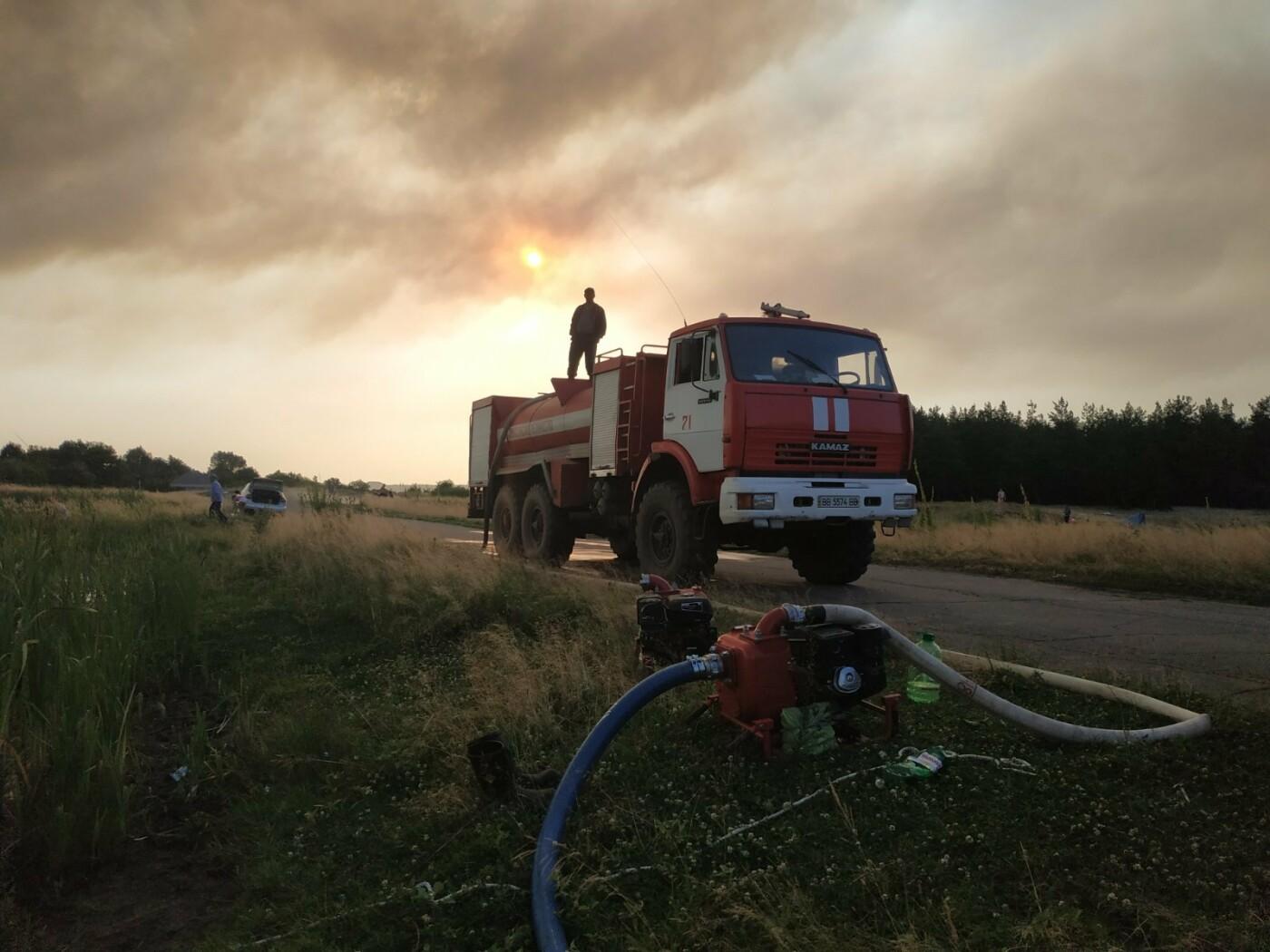 На Луганщине горит лес, - ФОТО, фото-2