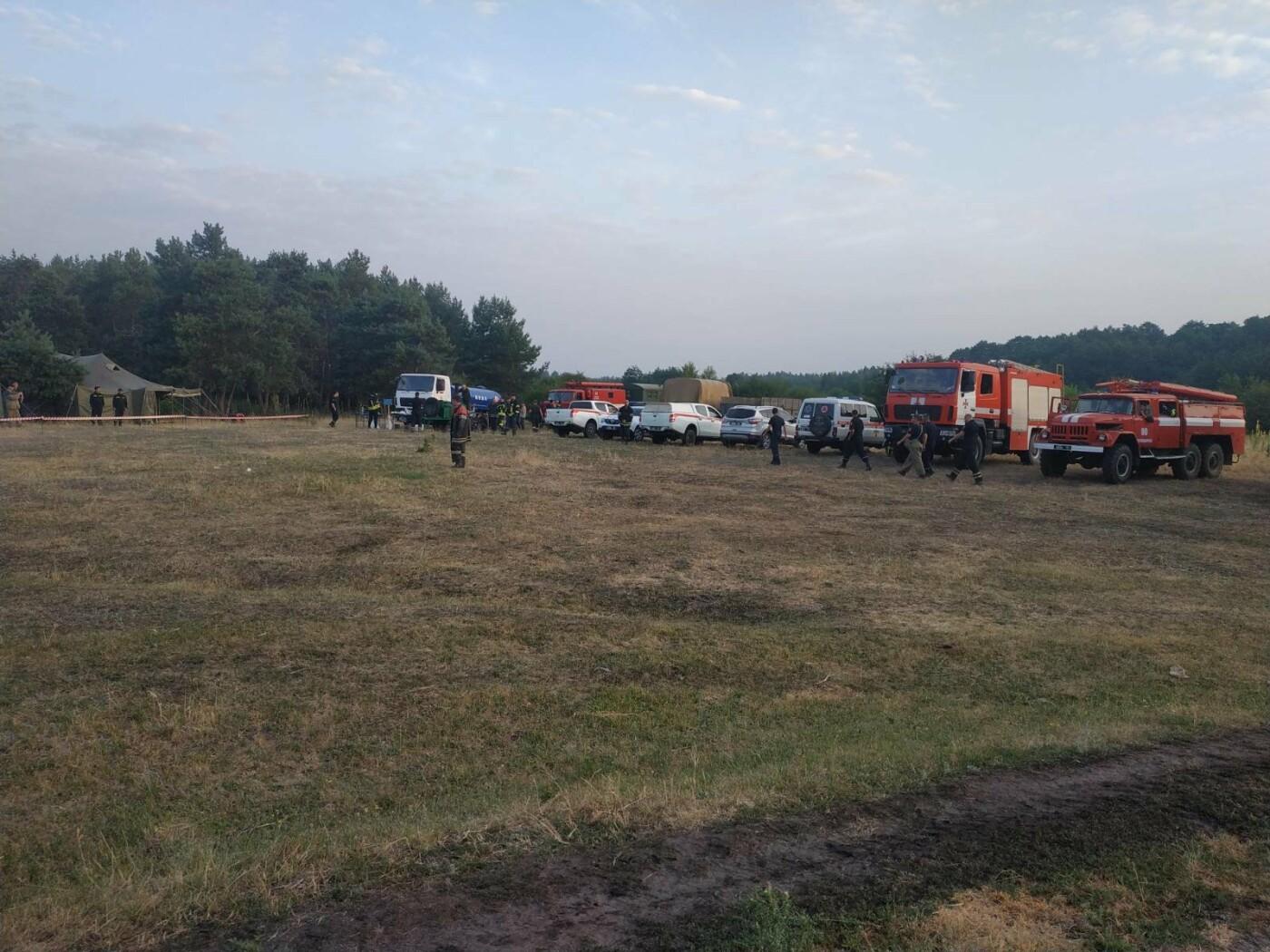 На Луганщине горит лес, - ФОТО, фото-1