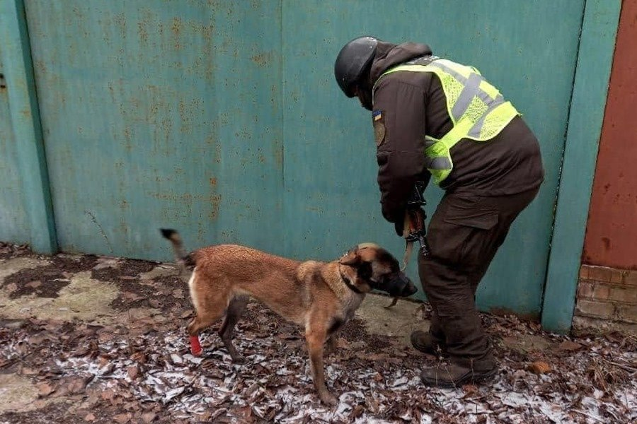 В Луганской области в заброшенном доме нашли тайник с боеприпасами, - ФОТО, фото-2