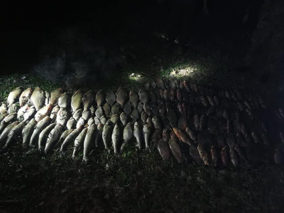 На Луганщине задержали браконьеров без документов, с лодкой, сетками и рыбой, - Фото, фото-2